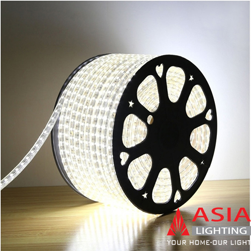 Led dây 2835 Asia